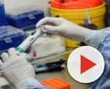 Coronavírus: Pesquisadores brasileiros estão avançando para achar a cura do vírus. (Arquivo Blasting News)