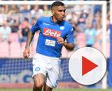 L'Inter pensa a Allan per il centrocampo