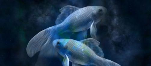 Peixes mostra mudanças surpreender na vida do signo em abril de 2020. (Reprodução/Pixabay)