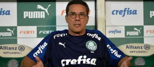 Técnico do Palmeiras, Vanderlei Luxemburgo busca título da Copa Conmebol Libertadores 2020. (Arquivo Blasting News)