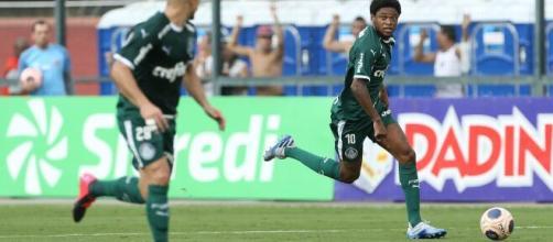 Foco do Palmeiras será a manutenção de equipe para focar na Libertadores. (Cesar Greco/S.E Palmeiras)
