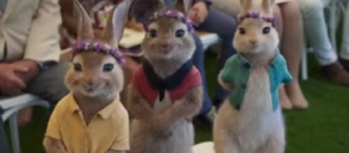 Coronavirus delays movie release - Peter Rabbit 2: The Runaway Teaser Trailer #1 (2020). [Image source/Movieclips Trailers YouTube video]