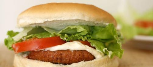 Hambúrguer industrializado é uma péssima opção para a dieta. (Arquivo Blasting News)