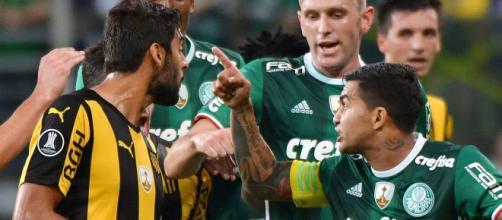 Em 2017, o Palmeiras conseguiu duas viradas sobre o Penãrol. (Arquivo Blasting News).