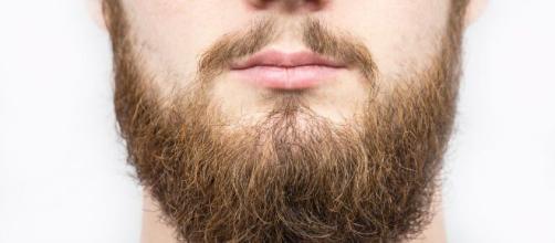 A dúvida é manter ou raspar a barba para se proteger do coronavírus. (Arquivo Blasting News)