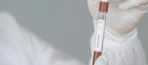 Coronavirus : Le flou persiste autour de l'immunisation des personnes affectées. Credit : Gustavo Fling/Pexels