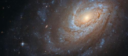 ¿No sabes cómo celebrar tu cumpleaños?, pues Hubble tiene una idea. - sputniknews.com