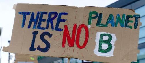 Entro il 2030 si potrebbe avere il collasso di molti ecosistemi