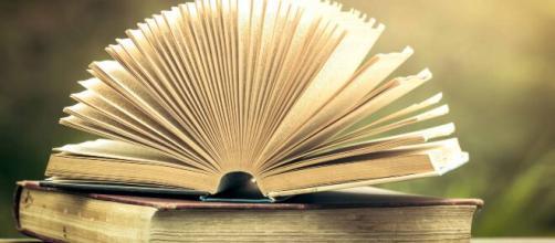 Libros bestseller: ¿Cuál es el mejor del 2020? | MONEDEROSMART - monederosmart.com