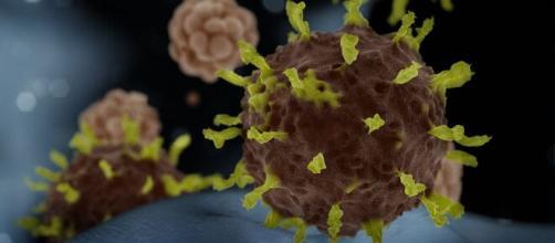Atitudes que podem ajudar na prevenção do coronavírus. (Arquivo Blasting News)