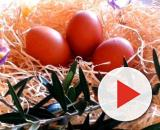 5 ricette per la Domenica delle Palme: dai primi, ai secondi, ai contorni