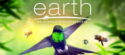 Earth - Un giorno straordinario: il film documentario martedì 21 aprile in tv su Rai 2 e in streaming online su Raiplay - comingsoon.it