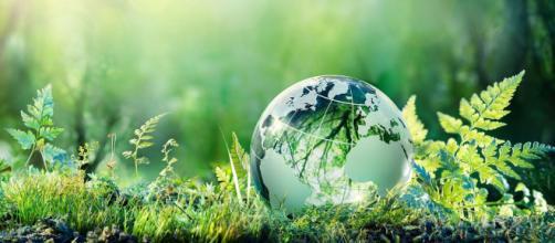 La Giornata della Terra festeggia nel 2020 il cinquantesimo anniversario.