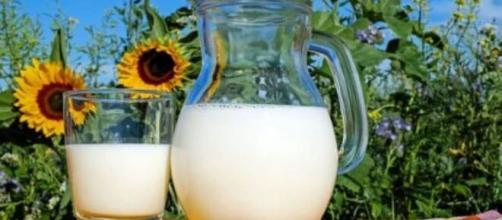 Alimentos como leites e derivados também auxiliam no combate da depressão. (Reprodução/pixabay)