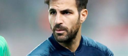 Cesc Fabregas, Chelsea, Allegations | Baaz - baaz.com