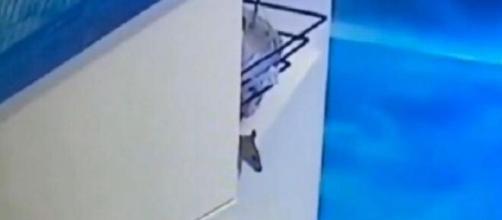 O rato apareceu na casa do 'BBB' e já ganhou mais seguidores que alguns ex-brothers. ( Reprodução/Instagram )