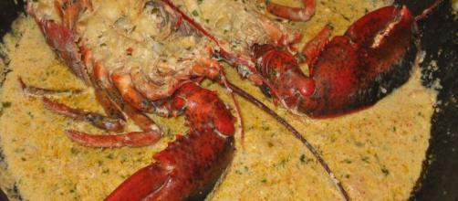 Astice alla Thermidor, un piatto francese gustoso e raffinato