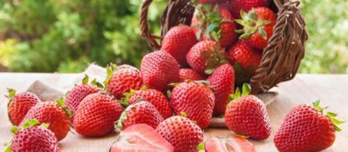 Las fresas contienen un 85% de agua, sacian y no engordan