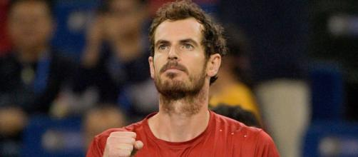 Andy Murray confirms Grand Slam singles return at 2020 Australian Open - telegraph.co.uk