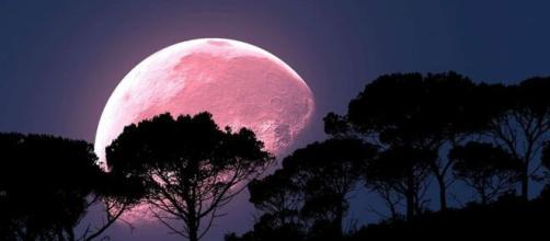 Luna de Fresa y Saturno se verá mejor que nunca desde la Tierra - infomistico.com
