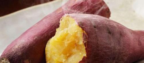 Batata doce é um excelente opção de carboidrato. (Arquivo Blasting News)