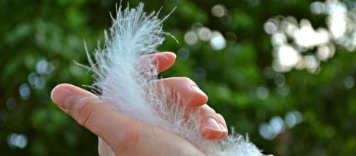 Las uñas pueden convertirse en un nido de gérmenes, si no se pone atención en su cuidado y lavado.