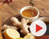 6 remèdes naturels contre les états grippaux | Remèdes naturels ... - pinterest.com