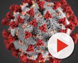 Regione Abruzzo, nel 2016 si temevano contagi da coronavirus