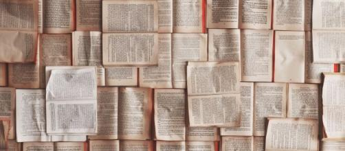 Grandes clássicos da literatura abordam pandemias/Photo Patrick Tomasso Unsplash
