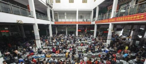 Il wet market di Wuhan in Cina