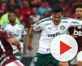 Flamengo e Palmeiras são dos dos dez mais clubes chatos do Brasil, segundo pesquisa (Foto: Arquivo/Blasting News)