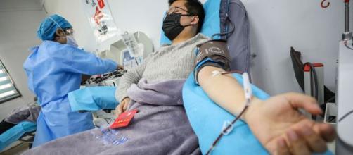 Los donantes de plasma que podrían cambiar el resultado de la pandemia