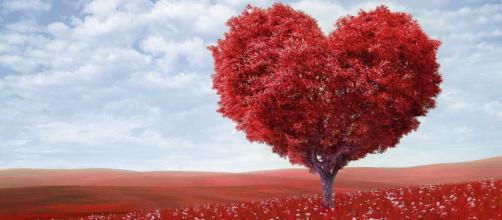 Oroscopo e classifica sull'amore di giugno: Leone trasgressivo, Gemelli passionali.