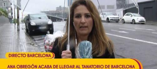 Sálvame /Bochornosa imagen de la periodista Laura Fa corriendo tras los padres de Aless Lequio