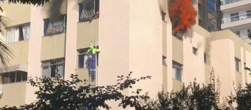 Momento em que garis salvam cachorros do fogo. (Reprodução/TV Gazeta)