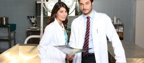 L'Allieva 3, confermata la terza ed ultima stagione: Sergio Assisi e Antonia Liskova nuovi ingressi.