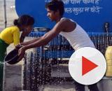 Índia registra temperatura de 50 graus e sofre com invasão de gafanhotos. (Arquivo Blasting News)