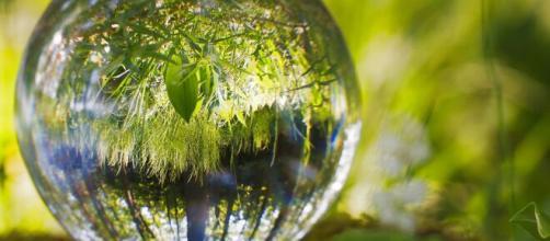 Empresas ¿un enemigo para el medio ambiente? – Casa de la Juventud - wordpress.com