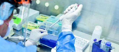 El laboratorio Vector en Rusia está desarrollando una vacuna contra el coronavirus.