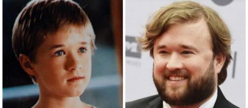 Alguns atores que fizeram sucesso quando crianças. (Fotomontagem)