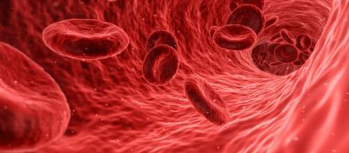 La sangre de tipo 0 es la que tiene una mayor protección natural contra el coronavirus. (Foto de Piqsels)