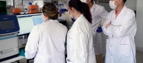 Según la OMS no habrá vacuna contra el coronavirus en 2020.