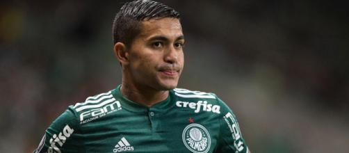 Dudu é jogador do Palmeiras. (Arquivo Blasting News)