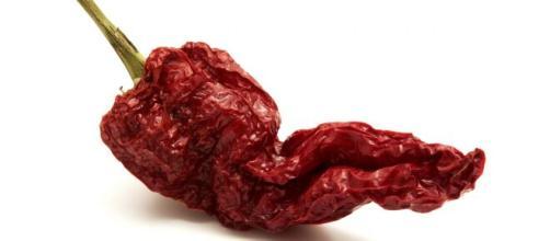 Peperone crusco: una verdura deliziosa.