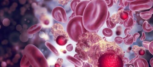 Tumori, studio di Yale trova l'ostacolo che impedisce al sistema immunitario di aggredirli.
