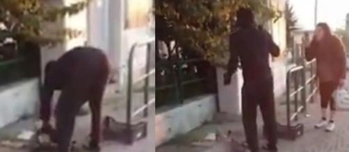 Livorno, migrante uccide e cucina un gatto in strada.