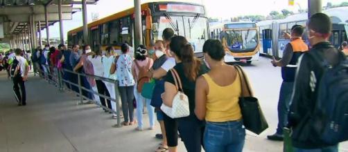 Filas extensas são registradas em terminais após reabertura de setores da economia. (Reprodução/TV Globo)
