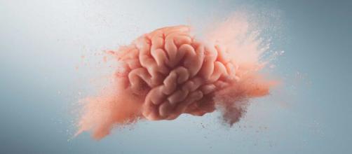 Alimentos capazes de turbinarem o cérebro. (Arquivo Blasting News)