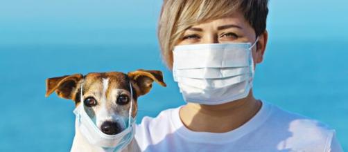 Hong Kong advierte que no besen a sus mascotas por el COVID-19. - peopleenespanol.com