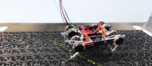 Un robot ha imparato a camminare da solo - esquire.com